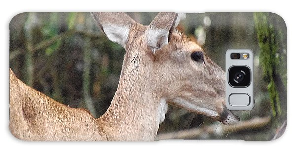 Whitetail Deer 038 Galaxy Case