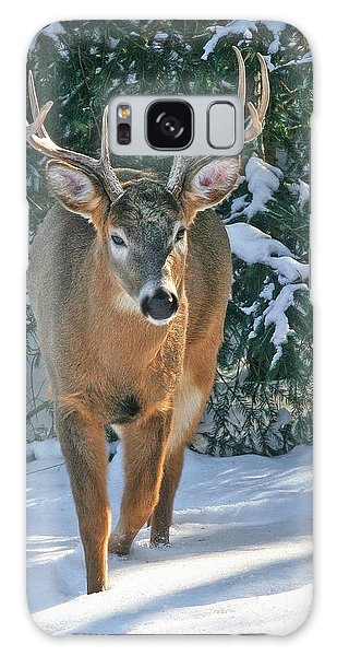 Whitetail Deer Eight Point Galaxy Case