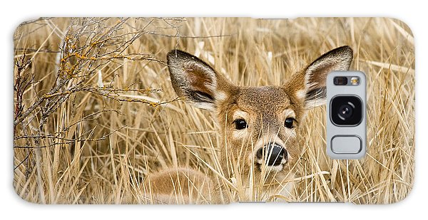 Whitetail In Weeds Galaxy Case