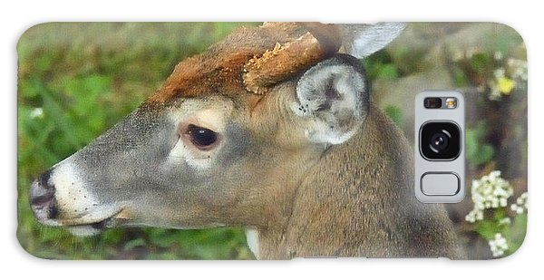 Galaxy Case - Whitetailed Deer Buck by A Gurmankin