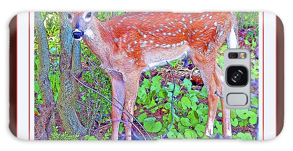 Galaxy Case - Whitetailed Deer Fawn In A Forest  by A Gurmankin