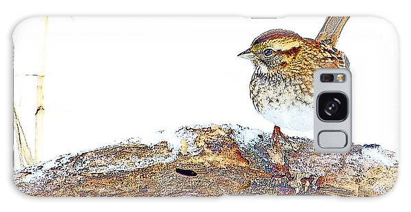 Galaxy Case - Whitethroated Sparrow On Snow-dusted Tree Branch Digital Art by A Gurmankin