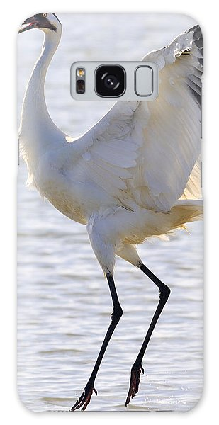 Whooping Crane - Whooping It Up Galaxy Case