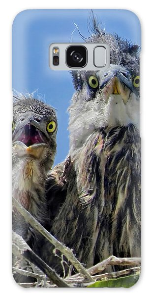 Wide Eyed Baby Herons Galaxy Case