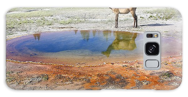 Wild And Free In Yellowstone Galaxy Case