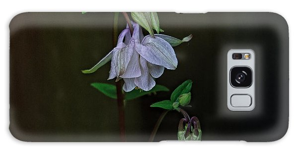 Aquilegia Galaxy Case - Wild Beauty by Susan Capuano