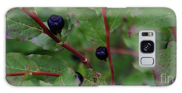 Wild Blueberries Galaxy Case by Amanda Holmes Tzafrir