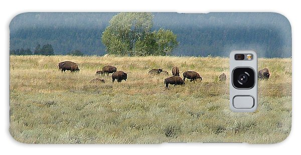 Wild Buffalo In The Grand Tetons Galaxy Case