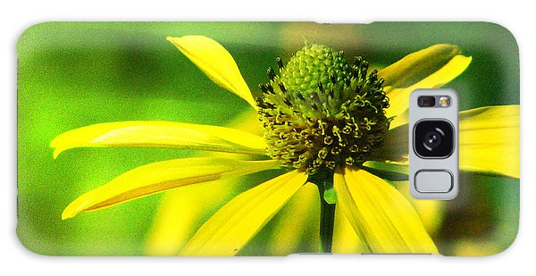 Wild Coneflower Secret Meadow Sandia Mountains Albuquerque New Mexico Galaxy Case