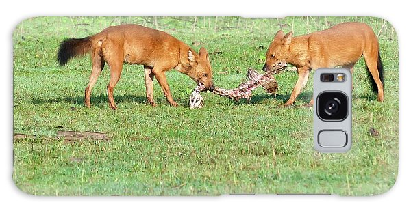 Carcass Galaxy Case - Wild Dogs Playing With A Carcass by K Jayaram