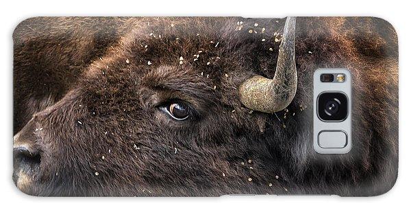 Wild Eye - Bison - Yellowstone Galaxy Case