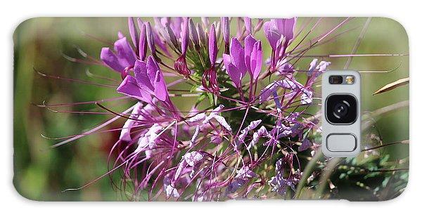 Wild Flower Galaxy Case by Cynthia Snyder