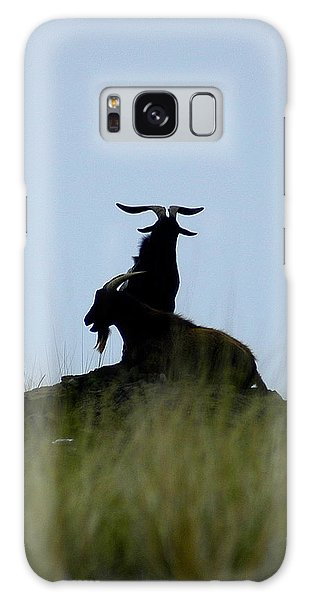 Wild Goats Of Kona Galaxy Case by Lori Seaman