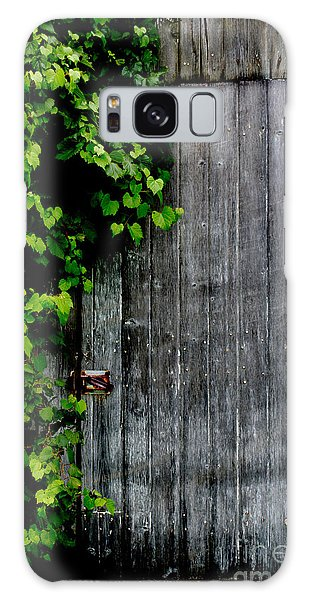 Wild Grape Vine Door Galaxy Case