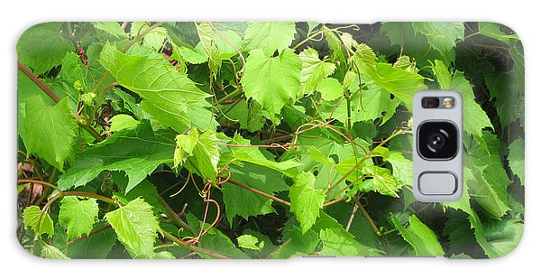 Wild Grapevine Galaxy Case