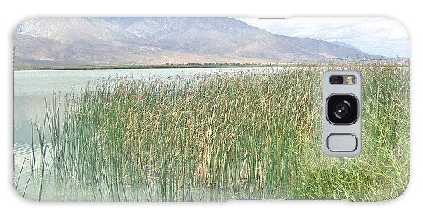 Wild Grass Galaxy Case by Marilyn Diaz