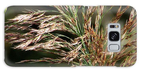 Wild Grasses I Galaxy Case by Kimberly Mackowski