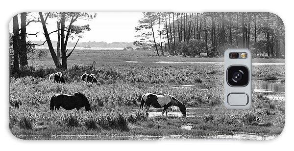 Galaxy Case featuring the photograph Wild Horses Of Assateague Feeding by Dan Friend