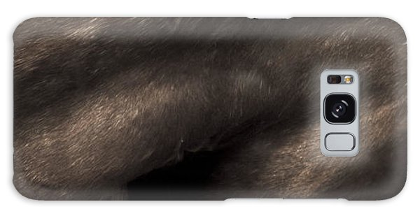 Wild Mustangs Of New Mexico 11 Galaxy Case