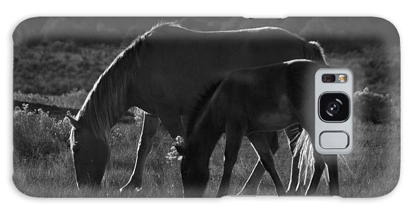 Wild Mustangs Of New Mexico 7 Galaxy Case