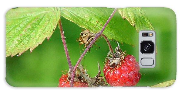 Wild Raspberries Galaxy Case