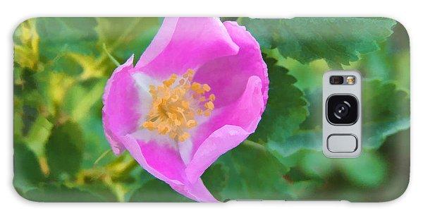 Wild Rose  Galaxy Case