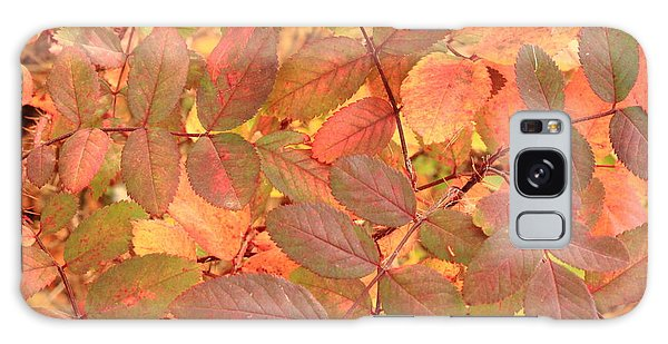 Wild Rose Leaves In Autumn Galaxy Case