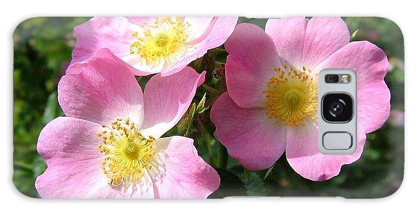 Wild Roses 1 Galaxy Case