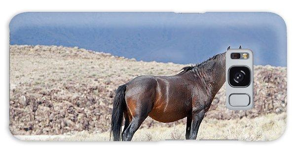 Wild Stallion In The Mountains Galaxy Case