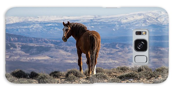 Wild Stallion Of Sand Wash Basin Galaxy Case