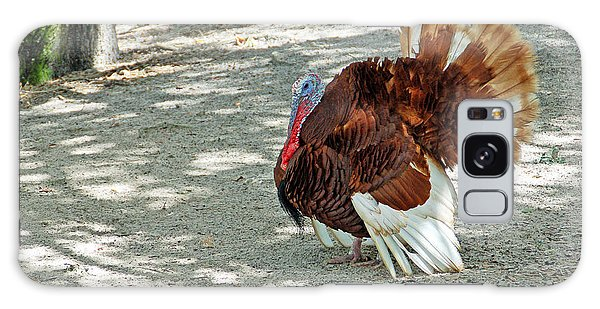 Wild Turkey Galaxy Case by Aimee L Maher Photography and Art Visit ALMGallerydotcom