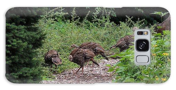 Wild Turkey Family Galaxy Case by Teresa Schomig