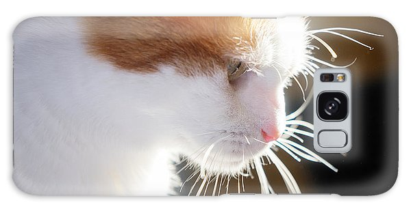 Wild Whiskers Galaxy Case