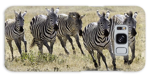 Wild Zebras Running  Galaxy Case