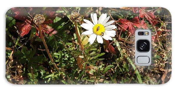 Wildflower @ Kit Carson Galaxy Case