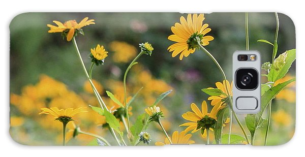Wildflowers 2013 Galaxy Case by Fred  Sheridan