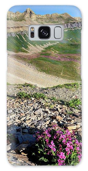 Wildflowers Above Timpanogos Basin At Sunrise Galaxy Case