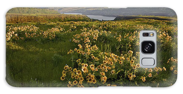Wildflowers At Dawn On The Columbia Gorge Galaxy Case