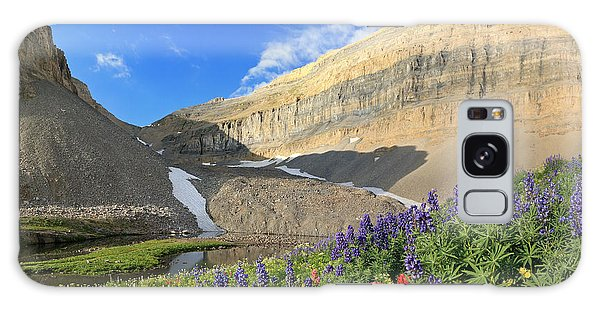 Wildflowers At Emerald Lake. Galaxy Case