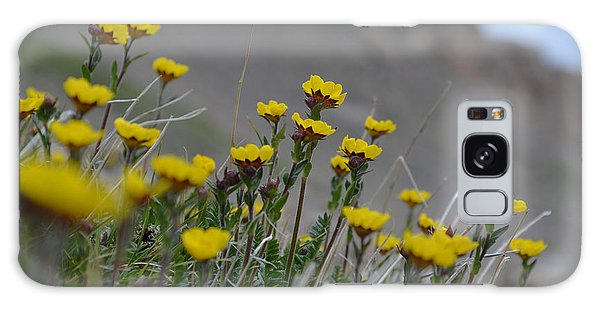 Galaxy Case featuring the photograph Wildflowers by Kate Avery
