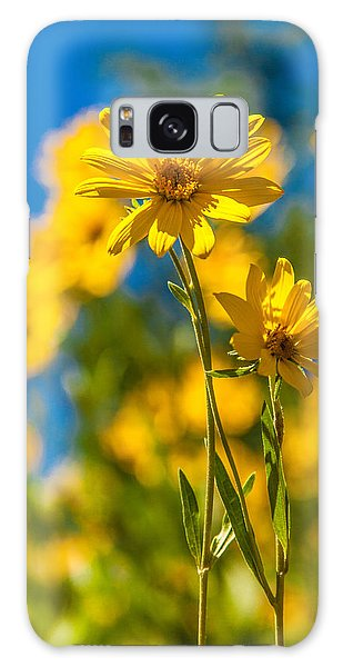 Teton Galaxy Case - Wildflowers Standing Out by Chad Dutson