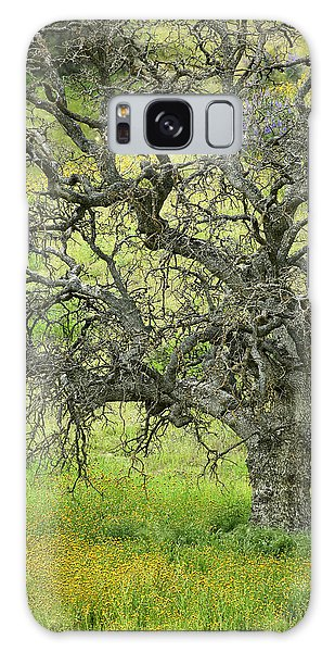 Wildflowers Under Oak Tree - Spring In Central California Galaxy Case by Ram Vasudev