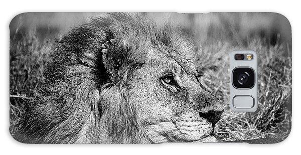 Wildlife Lion Galaxy Case