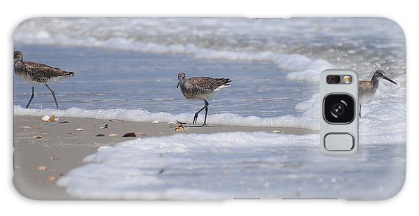 Willets On Ocracoke Galaxy Case by Dan Williams