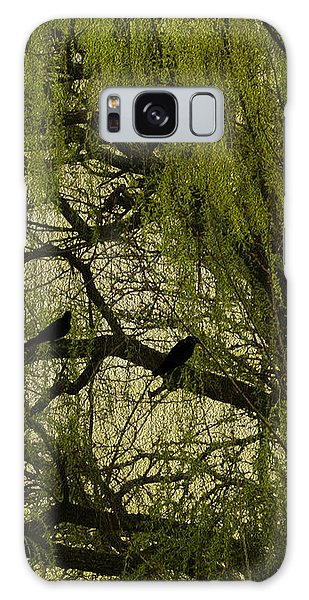 Willow Tree Galaxy Case