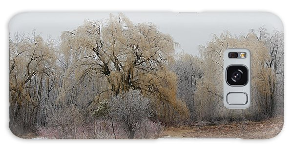 Willow Trees Iced Galaxy Case