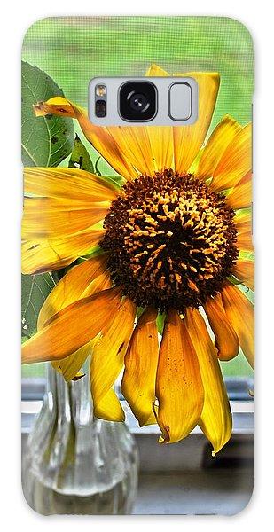 Wilting Sunflower In Window Galaxy Case by Greg Jackson