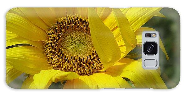 Windblown Sunflower One Galaxy Case