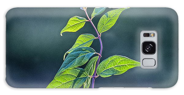 Winding Leaves Galaxy Case