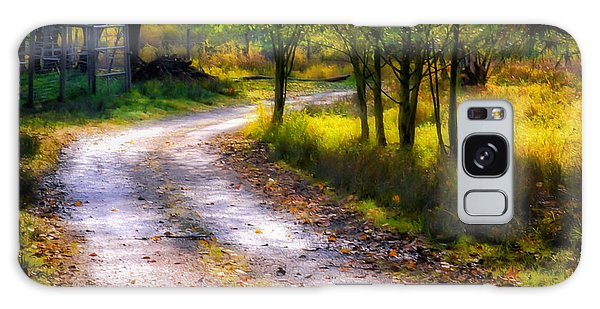 Winding Path In Autumn Galaxy Case